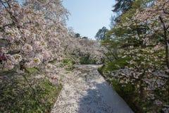 Hirosaki Cherry Blossom Festival 2018 au parc de Hirosaki, Aomori, Tohoku, Japon en avril 28,2018 : Vues spectaculaires du ` s de photographie stock libre de droits
