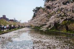 Hirosaki Cherry Blossom Festival 2018 au parc de Hirosaki, Aomori, Tohoku, Japon en avril 28,2018 : Vues spectaculaires de fossé  Image stock