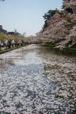 Hirosaki Cherry Blossom Festival 2018 au parc de Hirosaki, Aomori, Tohoku, Japon en avril 28,2018 : Vues spectaculaires de fossé  Images stock