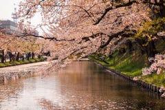 Hirosaki Cherry Blossom Festival 2018 au parc de Hirosaki, Aomori, Tohoku, Japon en avril 28,2018 : Vues spectaculaires de fossé  Photos stock