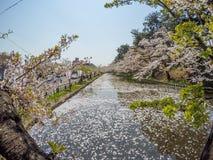 Hirosaki Cherry Blossom Festival 2018 no parque de Hirosaki, Aomori, Tohoku, Japão em abril 28,2018: Vistas espetaculares do foss Foto de Stock