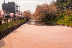 Hirosaki Cherry Blossom Festival 2018 no parque de Hirosaki, Aomori, Tohoku, Japão em abril 28,2018: Vistas espetaculares do foss Imagens de Stock Royalty Free