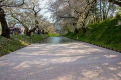 Hirosaki Cherry Blossom Festival 2018 no parque de Hirosaki, Aomori, Tohoku, Japão em abril 28,2018: Vistas espetaculares do foss Imagens de Stock