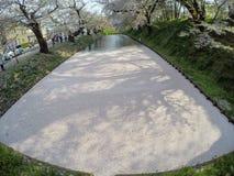Hirosaki Czereśniowego okwitnięcia festiwal 2018 przy Hirosaki parkiem, Aomori, Tohoku, Japonia na Kwietniu 28,2018: Spektakularn Obrazy Royalty Free
