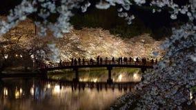 Hirosaki park cherry blossom matsuri festival light up at night in springtime season