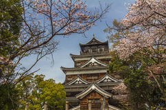 Hiroshima castle in Japan during cherry blossoms Royalty Free Stock Photo