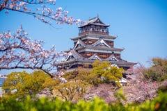 Hiroshima slott under Cherry Blossom Season royaltyfri foto