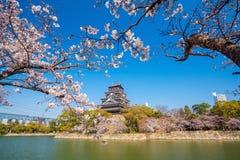 Hiroshima slott under Cherry Blossom Season arkivbild