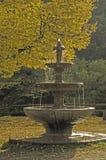 Hirsau Fountain Stock Image