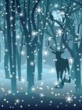 Hirsch im Winter-Wald Stockbild