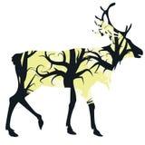 Hirsch-Schattenbild mit Wald Stockbild