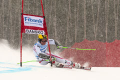 HIRSCHER Marsel Royalty Free Stock Photo