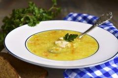Hirsesuppe mit Huhn und gebratenem Gemüse lizenzfreies stockfoto