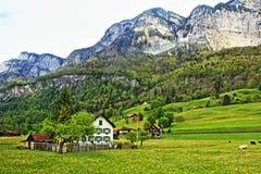 Hirtenansicht die Schweiz Stockbild