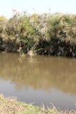 Hirtenkanal-Querneigung Stockbilder