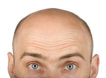 His eyes went up in dispair. Hairless isolated man with green eyes on white background Royalty Free Stock Image