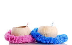 His And Hers (Tropical Drinks) Stock Photography
