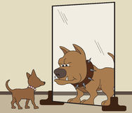 HIs Inner Dog. Small dog is seeing himself as big and tough in the mirror Stock Image