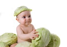 His(its) have found in cabbage Stock Photos