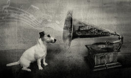 His master´s voice royalty free stock images