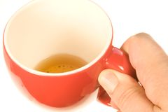 His Morning Cup of Tea. Color photo of a man holding a cup of tea royalty free stock photos