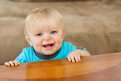 His toothy grin is there Royalty Free Stock Photo