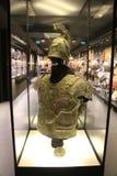 Hisart världar först och endast bosatt historiemuseumDiorama Arkivbild