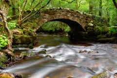 Hisley Bridge on Dartmoor. An ancient stone packhorse bridge crossing the River Bovey in Hisley Woods in east Dartmoor Stock Images