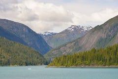 Hisnande fjord i Alaska i sommaren arkivfoto