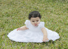 Hispanic Baby in the Grass - 1. Portrait of a little toddler sitting in the grass having a good time in a baptismal gown Stock Photography