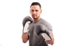 Hispanic boxer wearing gloves Royalty Free Stock Photos