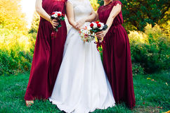 Hispanic bride and bridesmaids in row Royalty Free Stock Image