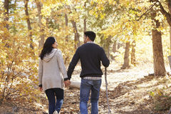Hispanic couple hold hands hiking in forest, back view Stock Photos