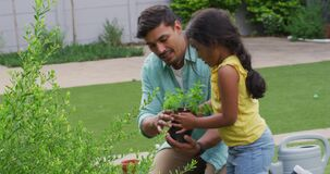 Hispanic father and daughter teaching planting flowers in the garden