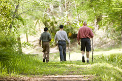 Hispanic father and sons hiking on trail in woods. Rear view of father and two sons hiking on trail in woods stock image