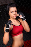 Hispanic Fighter Girl Stock Image