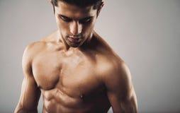 Hispanic fitness model on grey background Stock Images