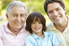 Hispanic Grandfather, Father And Son Relaxing In Park Royalty Free Stock Photo