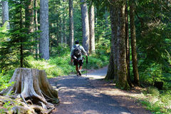 Hispanic Man On A Hike Stock Images