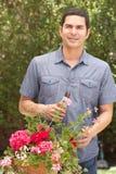 Hispanic Man Working In Garden Tidying Pots Royalty Free Stock Photos