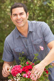 Hispanic Man Working In Garden Tidying Pots Stock Photos