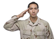 Hispanic military veteran salutes Royalty Free Stock Images