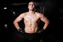 Hispanic MMA Fighter in a cage Stock Photo