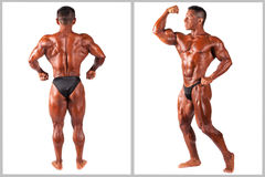 Hispanic Muscle man posing, set Royalty Free Stock Photos