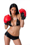 Hispanic woman boxing Stock Image