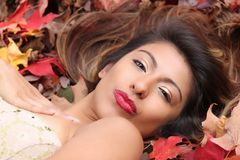 Hispanic woman gives a sultry pout. Hispanic woman lays among colorful fall leaves with her hair cascading behind her, giving a sultry pout; gold eye makeup and Stock Image