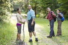 Hispanische Familie, die im Holz auf Spur wandert Stockbild