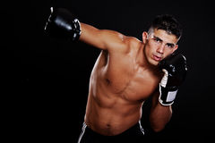 Hispanischer Boxer Stockbild
