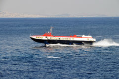 hispeed fartygdelfin Royaltyfria Foton