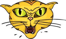 hiss кота Стоковое Изображение